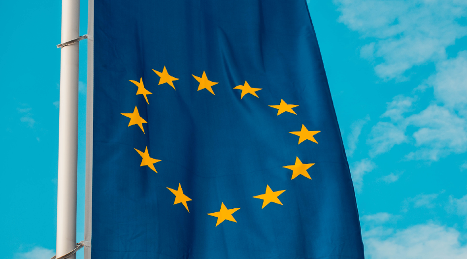 GDPR in the eyes of the member states